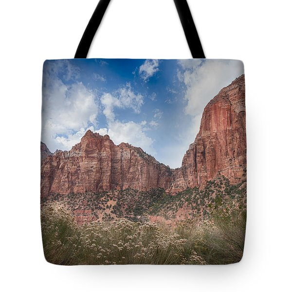 Descent Into Zion Tote Bag