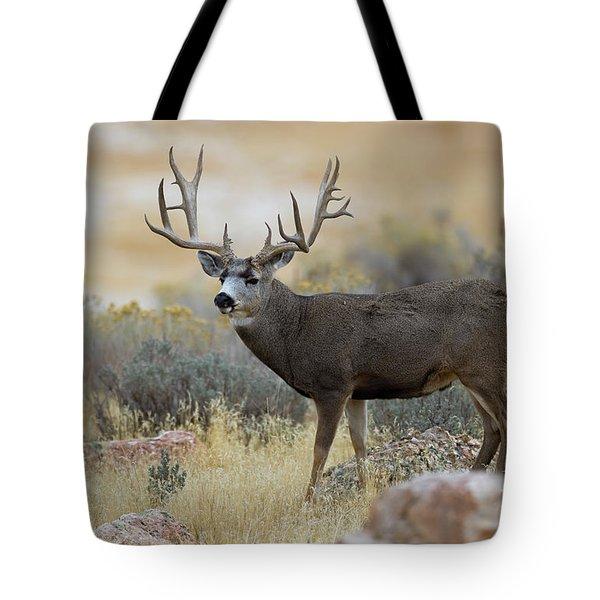 Desert Beast Tote Bag