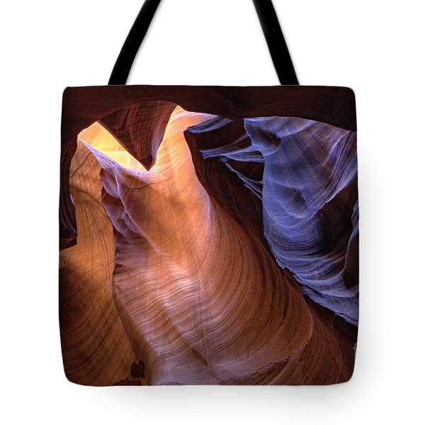Desert Camel Tote Bag
