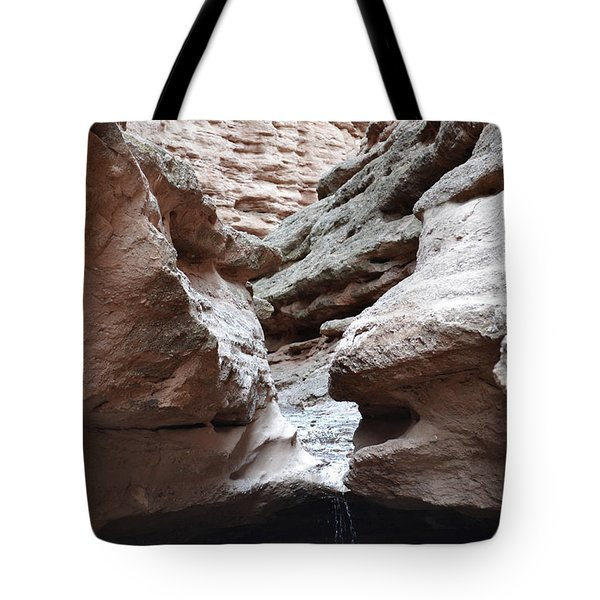 Tote Bag featuring the photograph Desert Canyon Stream by Andrea Hazel Ihlefeld