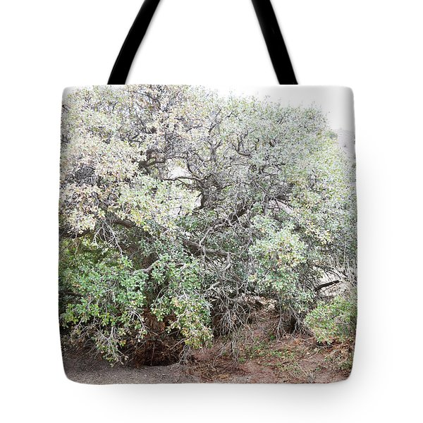 Tote Bag featuring the photograph Desert Canyon Tree by Andrea Hazel Ihlefeld