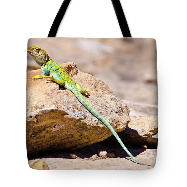 Desert Colors Tote Bag