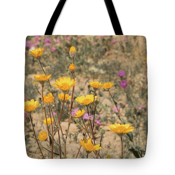 Tote Bag featuring the photograph Desert Daisy by Michael Hope