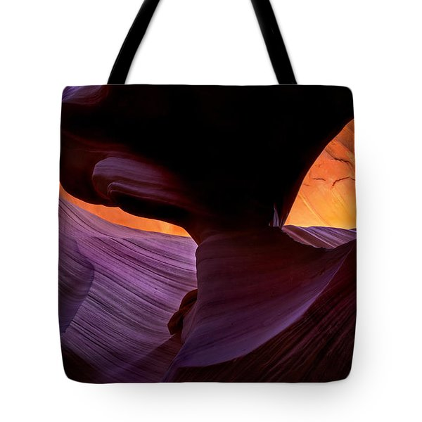 Desert Eye Tote Bag by Mike  Dawson