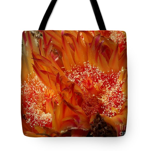 Desert Fire Tote Bag by Kathy McClure