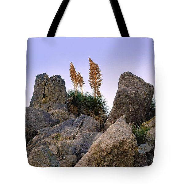 Desert Flags - Cropped Version Tote Bag
