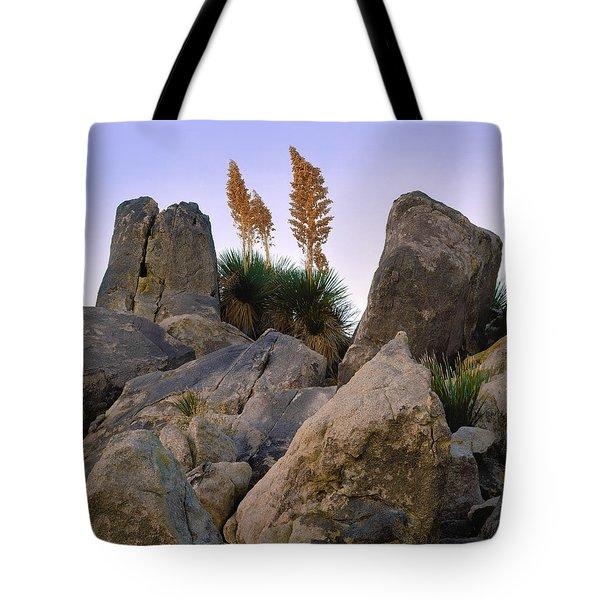 Desert Flags Tote Bag