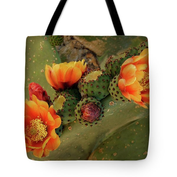 Tote Bag featuring the photograph Desert Flame by Lucinda Walter