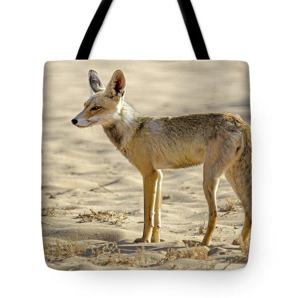 desert Fox 02 Tote Bag