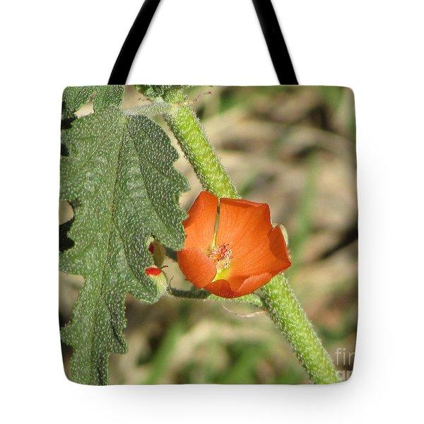 Desert Globemallow Bloom 202 Tote Bag