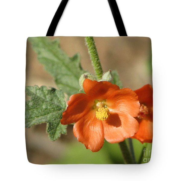 Desert Globemallow Bloom 220 Tote Bag
