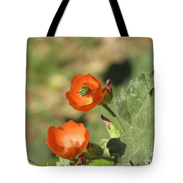 Desert Globemallow Blooms 227 Tote Bag