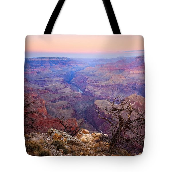 Desert Glow Tote Bag by Mike  Dawson