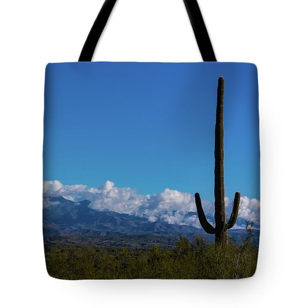 Desert Inversion Cactus Tote Bag