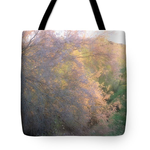 Desert Ironwood Blooming In The Golden Hour Tote Bag