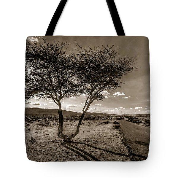 Desert Landmarks  Tote Bag