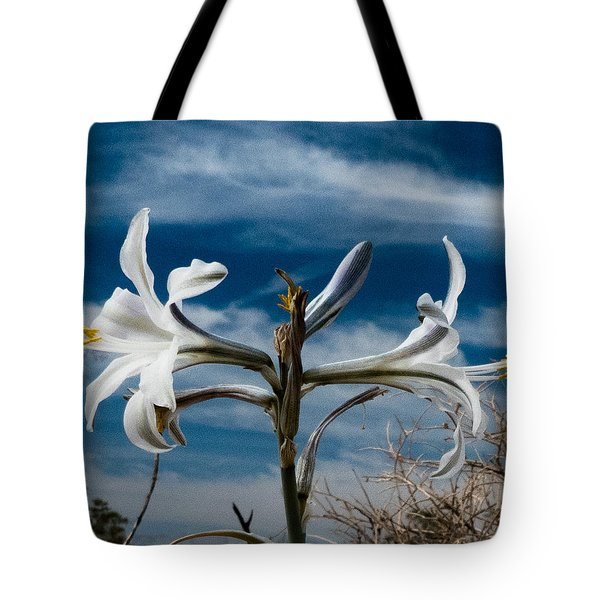 Desert Lilly Close Up Tote Bag