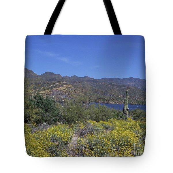 Desert Oasis Tote Bag