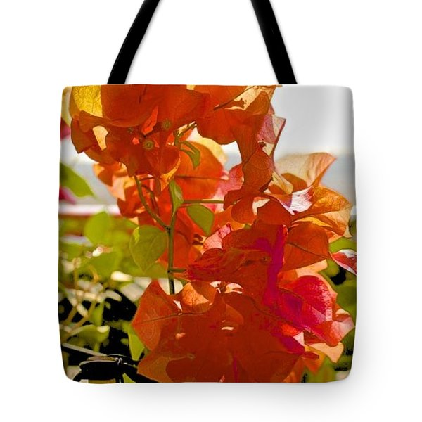 Desert Orange Tote Bag