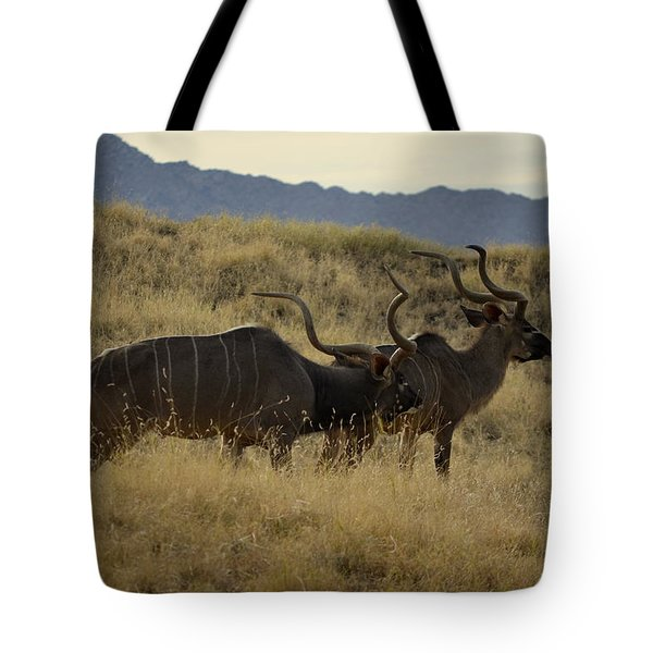 Desert Palm Landscape Tote Bag