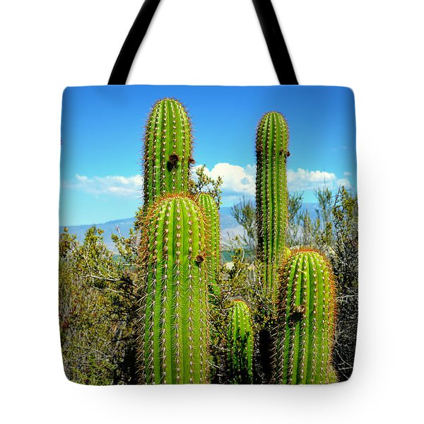 Tote Bag featuring the photograph Desert Plants - All In The Family by Glenn McCarthy
