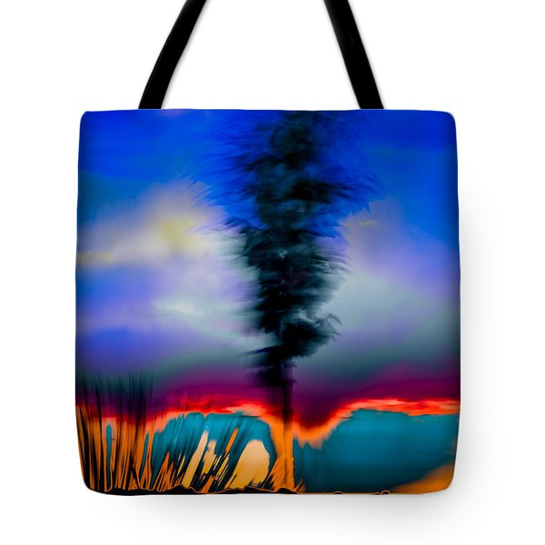 Tote Bag featuring the photograph Desert Pottery by Beverly Parks