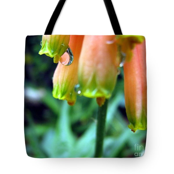 Desert Rain Tote Bag by Misha Bean
