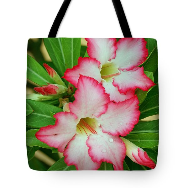Tote Bag featuring the photograph Desert Rose With Buds And Water by Larry Nieland