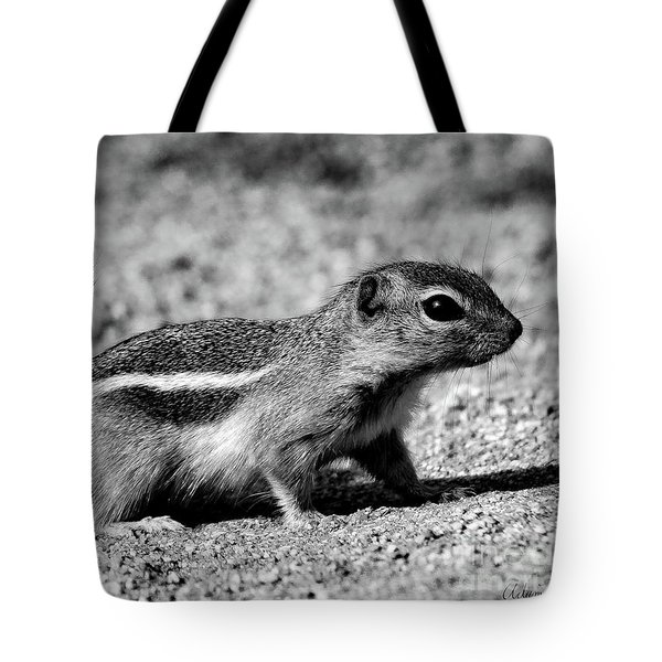 Scavenger, Black And White Tote Bag