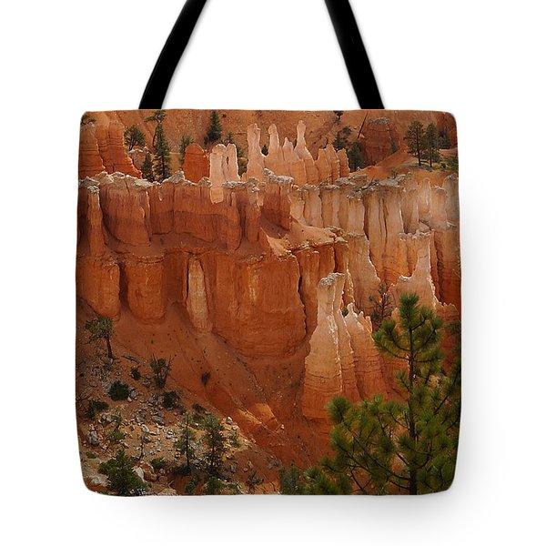 Desert Sentinels Tote Bag