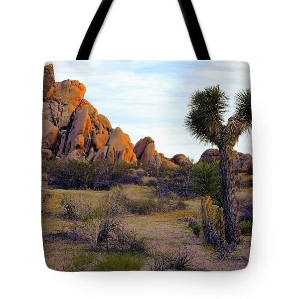 Desert Soft Light Tote Bag