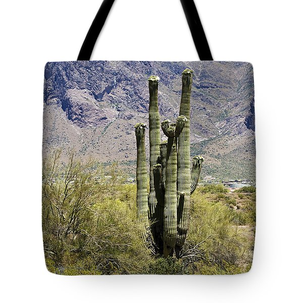 Tote Bag featuring the photograph Desert Strength by Phyllis Denton