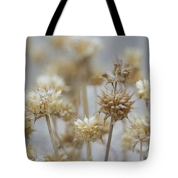 Desert Thistles Tote Bag by Sue Cullumber