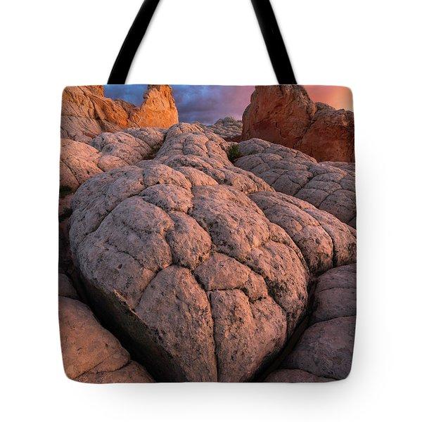Desert Turtle Tote Bag