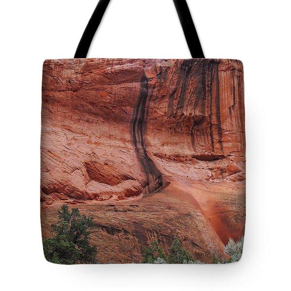 Desert Varnish Along Burr Trail Tote Bag