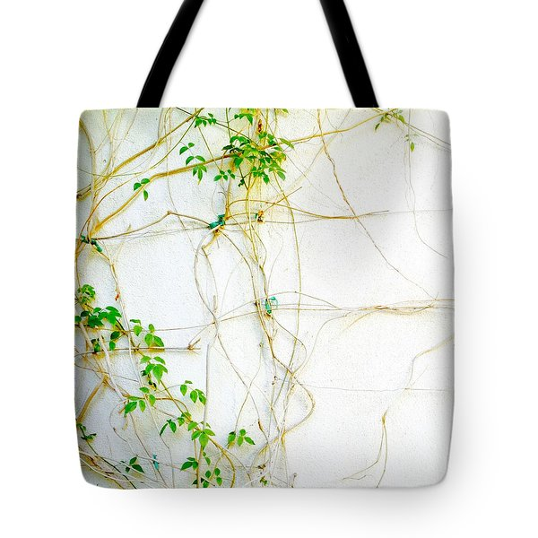 Desert Vines Tote Bag