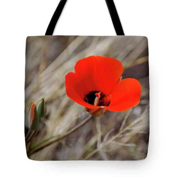 Tote Bag featuring the photograph Desert Wildflower by Frank Stallone