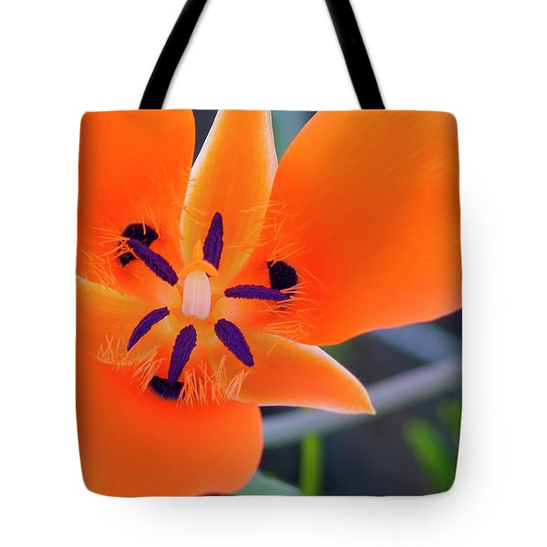 Tote Bag featuring the photograph Desert Wildflower by Penny Lisowski
