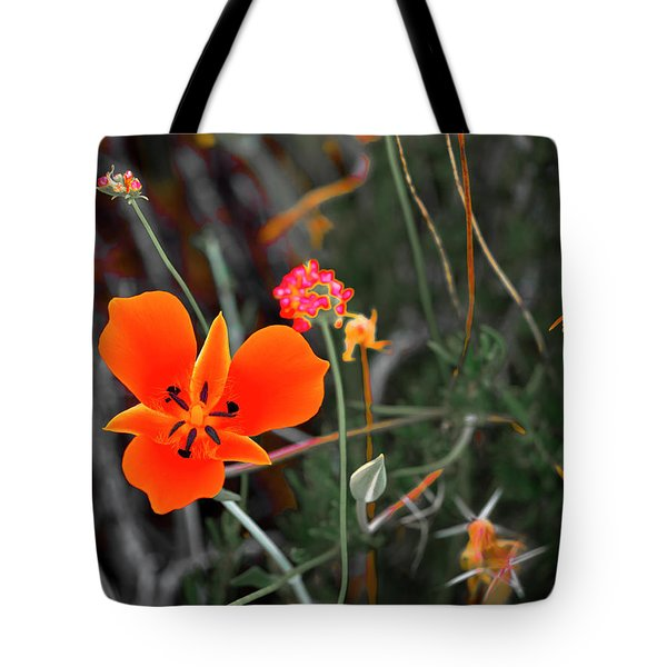 Tote Bag featuring the photograph Desert Wildflowers by Penny Lisowski