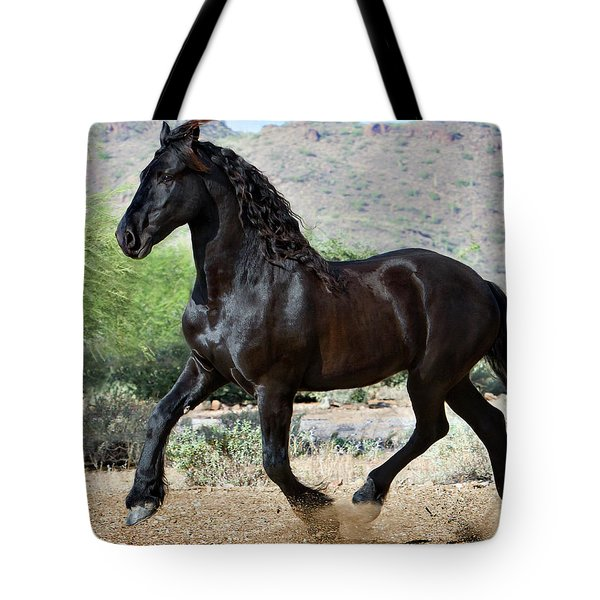 Desert Wind Tote Bag