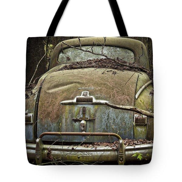 Desolate Beauty Tote Bag