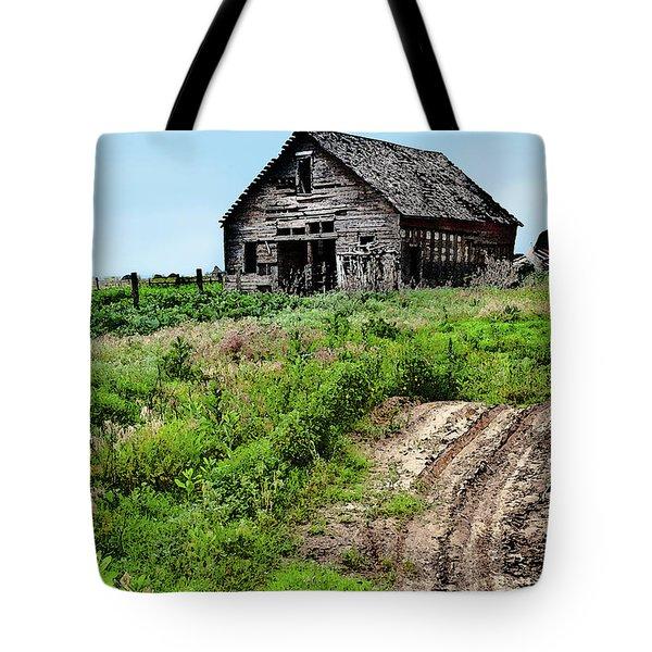 Desolate Tote Bag by Betty LaRue