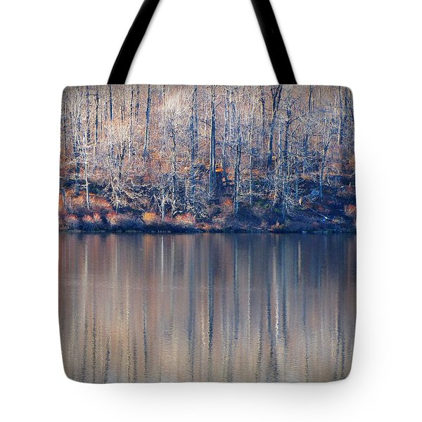 Desolate Splendor Tote Bag by David Dehner