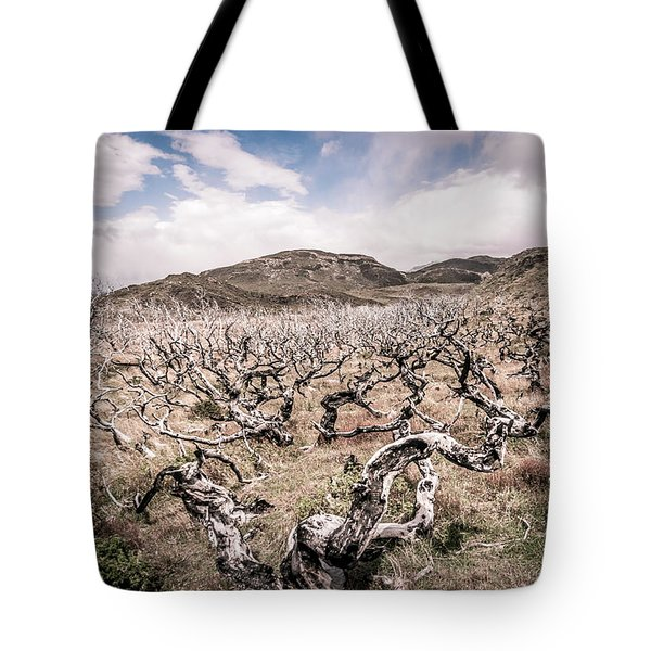 Tote Bag featuring the photograph Desolation by Andrew Matwijec