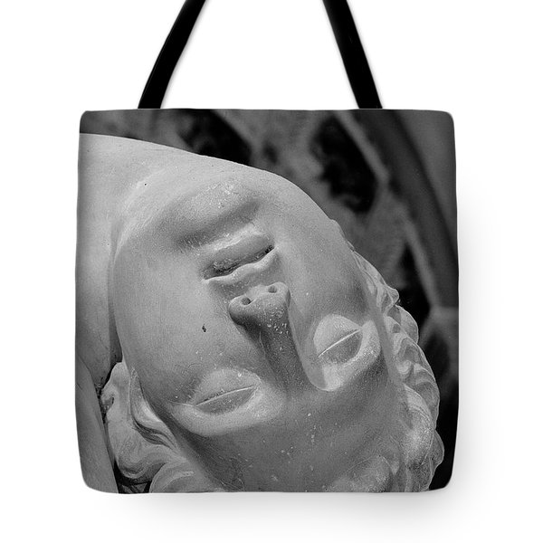 Detail Of Menelaus Supporting The Body Of Patroclus Tote Bag
