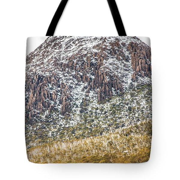 Detail On A Australian Snow Covered Mountain Tote Bag