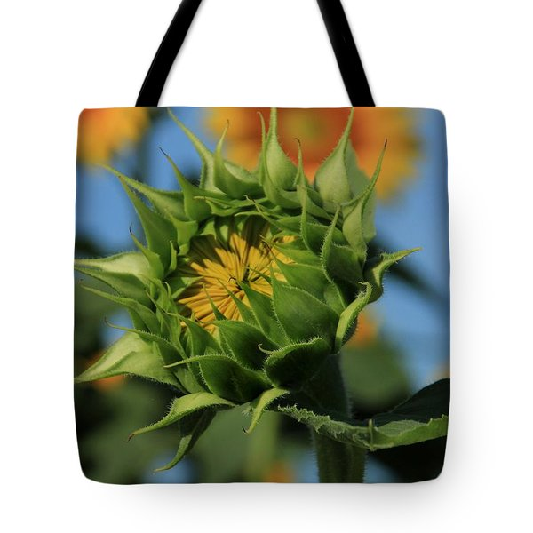 Tote Bag featuring the photograph Developing Petals On A Sunflower by Chris Berry