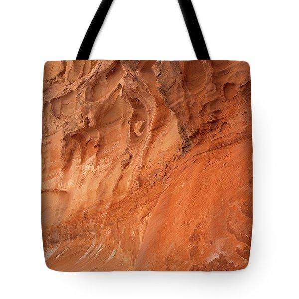 Devil's Canyon Wall Tote Bag