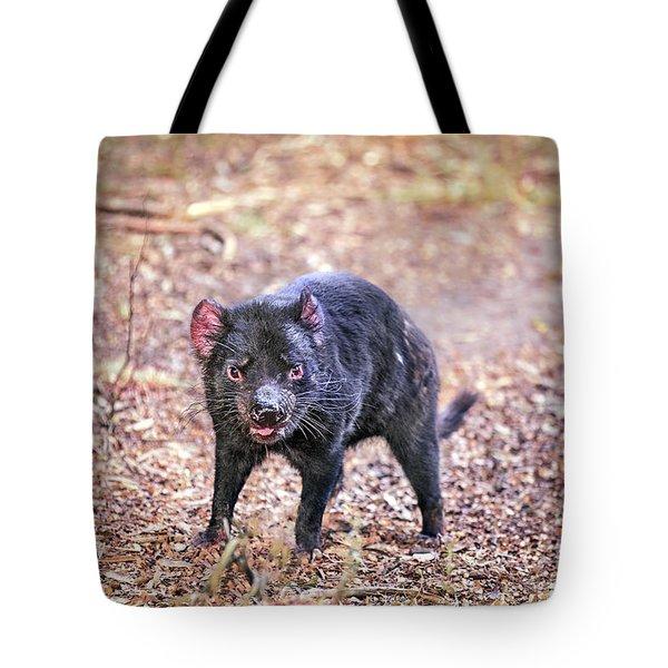 Devil's Ground Tote Bag