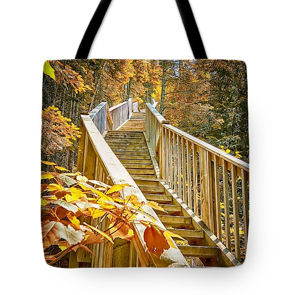 Devil's Kettle Stairway Tote Bag by Linda Tiepelman